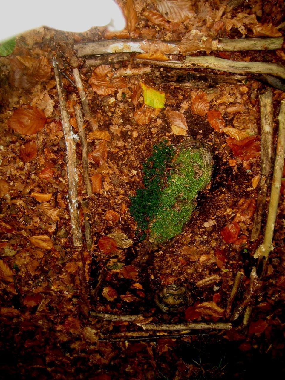 Landart beim Wandern: die Natur entdecken und Kunstwerke gestalten ...