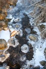 Auch im Winter ein Erlebnis - die Samerberger Filze